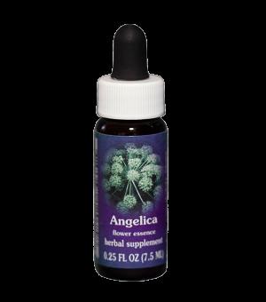 angelica fes, flower essence