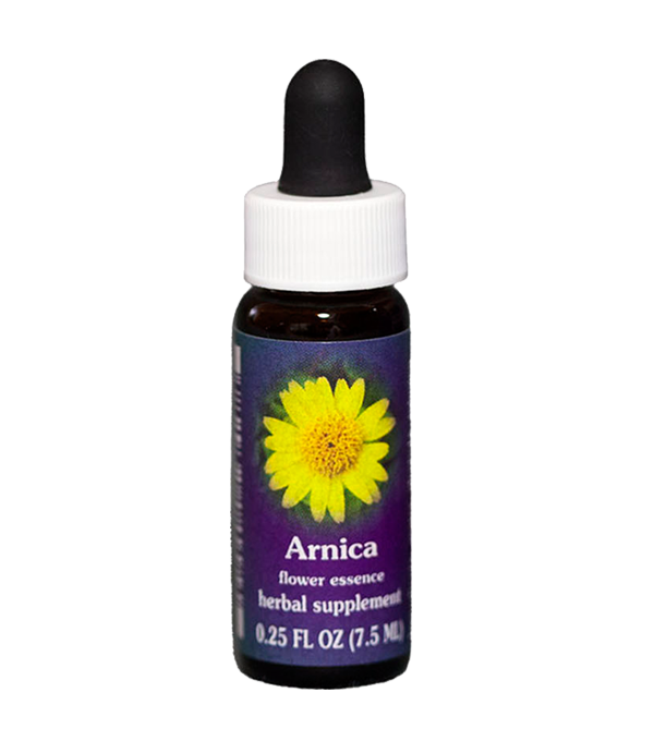 arnica, fes flower essence