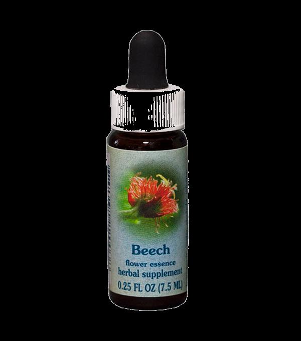 beech, healing herbs, flower essence