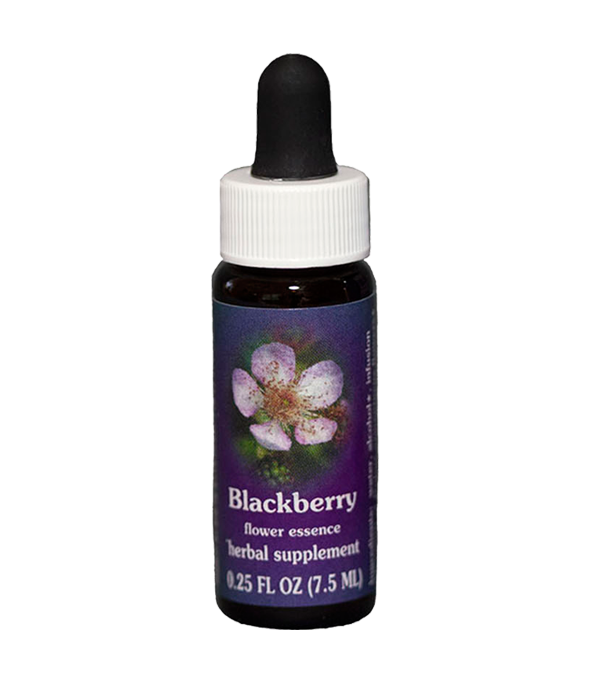 blackberry, fes flower essence