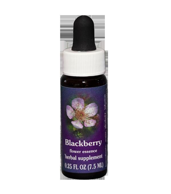 blackberry, fes flower essence