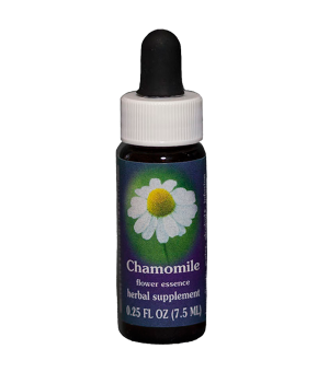 chamomile, fes flower essence