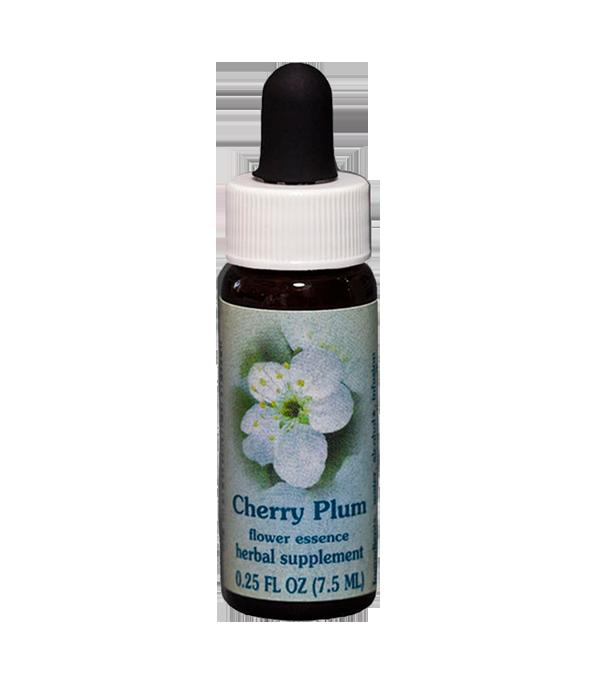 cherry plum, healing herbs, flower essence