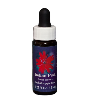 Indian Pink, fes, flower essence