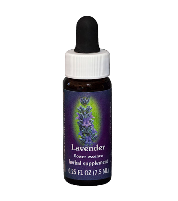 lavender, fes flower essence