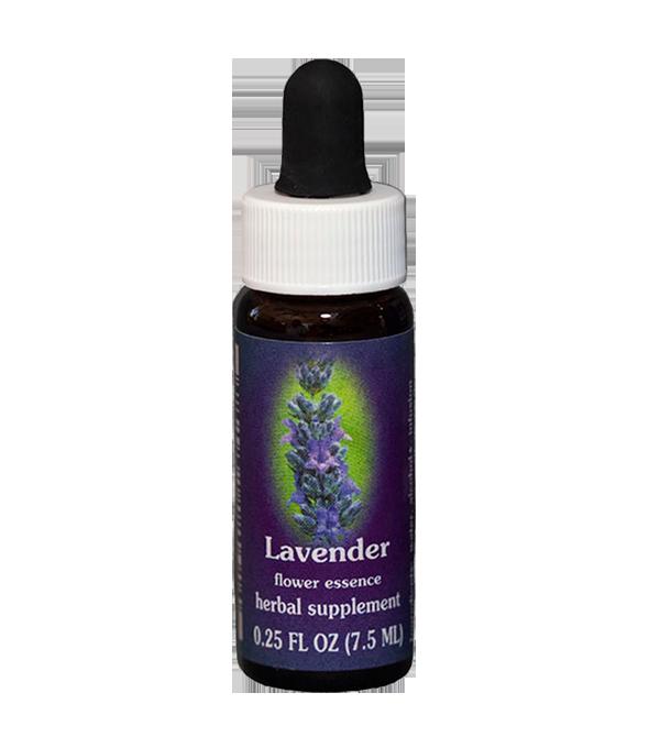 lavender, fes flower essence