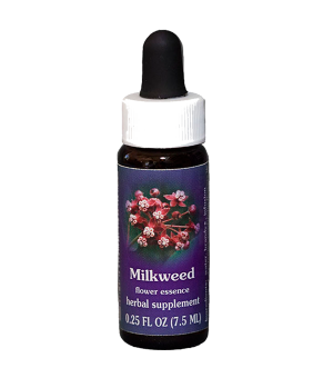 milkweed, fes flower essence