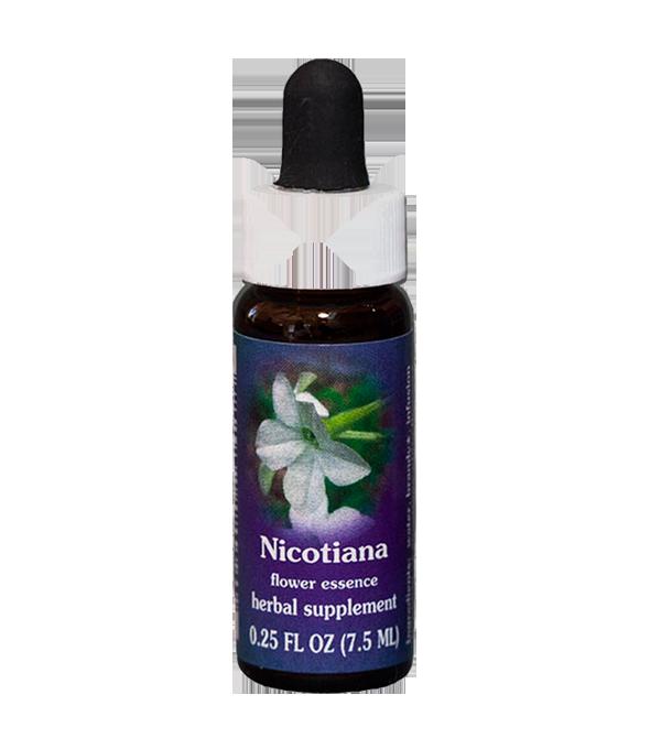 nicotiana, fes flower essence