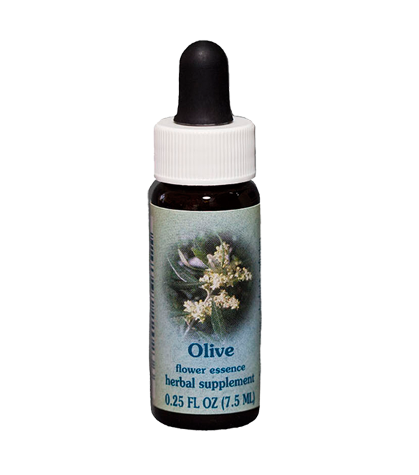 olive, healing herbs flower essence