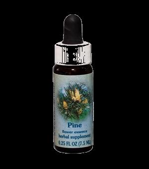 pine, healing herbs flower essence