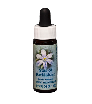 star of bethlehem, healing herbs flower essence