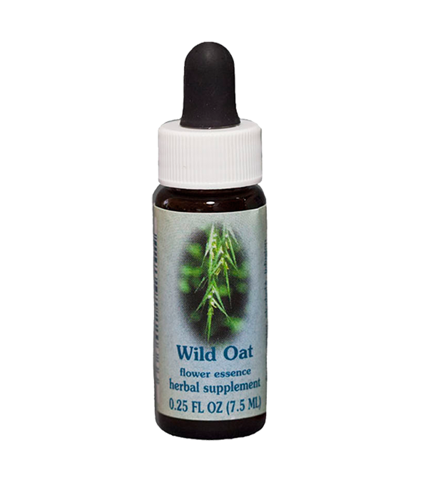 wild oat, healing herbs, flower essences