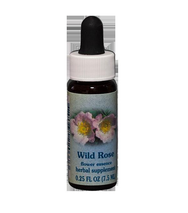 widrose, healing herbs, flower essences